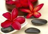 Massagens shiatsu sessão valores no Capão Redondo